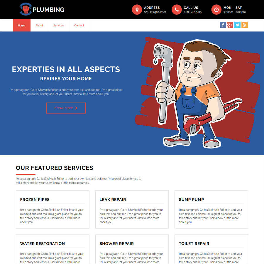 Plumbing website theme